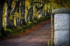 Entrance. This image was captured in South Dublin Royalty Free Stock Image