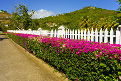 The entrance leading to a hotel in the windward islands Royalty Free Stock Images