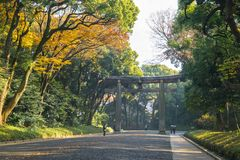 Entrance at Meiji jingu shrine in autumn, Tokyo Japan. People walking around the entrance of Meiji jingu shrine in autumn , Tokyo Japan royalty free stock images