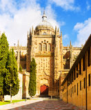 Entrance of New Cathedral of Salamanca Stock Image