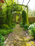 Pergola in the garden during spring. The entrance pergola to the garden during spring, flanked by white daffodils and crocuses, Belgium Royalty Free Stock Photo