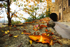 Entrance road to the castle in autumn Royalty Free Stock Image