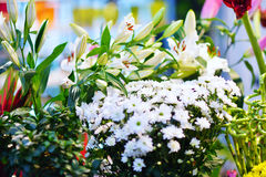 Entrance into a small flower shop. Fresh flowers. Stock Photos