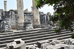 The Temple of Apollo in Didim royalty free stock images