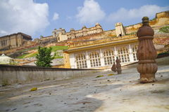 Entrance To Amber Fort. Front entrance of Amber Fort. Jaipur,Rajasthan royalty free stock image