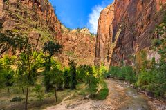 Entrance to beautiful the Virgin River Narrows canyon in Zion National Park, Utah. royalty free stock image