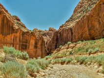 Entrance to Buckskin Gulch in Vermilion Cliffs Wilderness. Buckskin Gulch is the longest and deepest slot canyon in the southwest and is located in the Coyote royalty free stock images