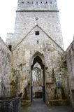 Entrance to a cathedral ruin in Ireland. With beautiful stonework Royalty Free Stock Image