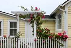 Entrance to cheery yellow wood house with white picket fence and a gate with an arbor with wild roses growing up and over it stock photography