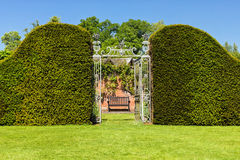 Entrance through Privet Hedge to Hampton Court Castle`s Walled Garden, Herefordshire, England. A wrought iron gate is one of the entrances in the grounds of Stock Image