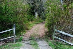 Entrance to a hiking path. An entrance to a walking path into a wooded area Stock Photos