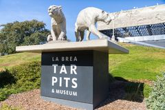 Entrance to La Brea Tar Pits. Saber tooth tigers grace the entrance to the famous museum at La Brea Tar Pits in Los Angeles Royalty Free Stock Photos