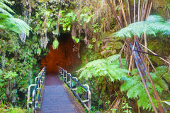 Entrance to the lava tube Royalty Free Stock Photos
