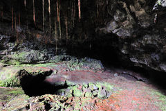 Entrance to Lava Tubes, Kaumana Caves Contry Park Stock Photography
