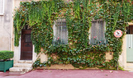 Entrance to old house overgrown with ivy, French Provence Stock Image