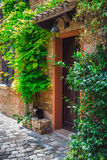 Entrance to the old Italian house and the cat Stock Photography