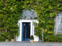 Entrance to a periodic house in Ireland. Covered with greenery and plants royalty free stock photos
