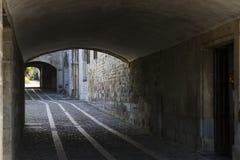 Entrance to the Royal Collegiate of Santa María Church, Roncesv Stock Photography