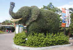 Entrance To San Diego Zoo With An Elephant Topiary Stock Images