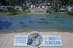 Entrance to Sea Turtle exhibit, Sea World, San Diego, CA Stock Image