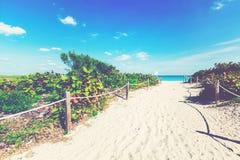 Entrance to a tropical beach Stock Photo