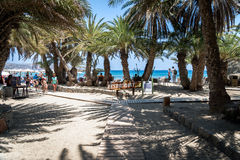 Entrance to Vai beach with green palms and sandy beach. VAI, CRETE, GREECE - JUNE 2016: Entrance to Vai beach with green palms and sandy beach Stock Images