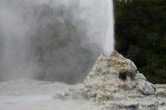 Entrando em erupção o geyser Foto de Stock