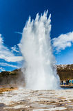 Entrando em erupção o geyser Imagens de Stock Royalty Free