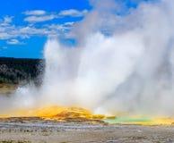 Entrando em erupção o geyser na área dos potenciômetros de pintura da fonte do parque nacional de Yellowstone, Wyoming fotografia de stock royalty free