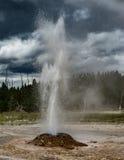 Entrando em erupção o geyser no parque nacional de Yellowstone foto de stock royalty free