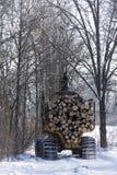 Entrando uma floresta central de Minnesota Fotos de Stock