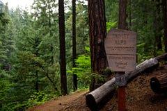 Entrare nella regione selvaggia delle alpi della trinità Fotografia Stock
