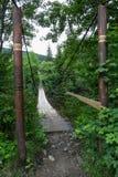 Entrata al vecchio ponte sospeso sopra il fiume nella foresta fotografia stock