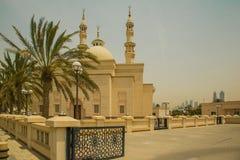 Entrata alla moschea Immagine Stock Libera da Diritti
