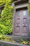 Entrata antica della porta Immagini Stock Libere da Diritti