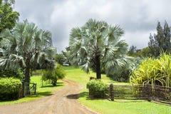 Entrata del ranch in Hawai Fotografie Stock