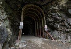 Entrata del tunnel Fotografia Stock Libera da Diritti