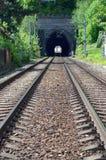 Entrata del tunnel ferroviario Fotografie Stock Libere da Diritti