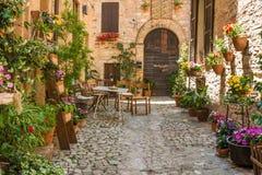 Entrata della Camera con mobili da giardino ed i vasi da fiori Fotografie Stock