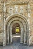 Entrata della cattedrale con le sculture. Clonmacnoise. L'Irlanda Fotografia Stock Libera da Diritti