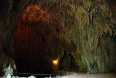 Entrata della caverna fotografie stock libere da diritti