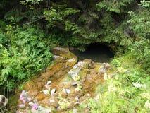 Entrata della caverna, montagna di Apuseni romania Fotografia Stock Libera da Diritti