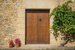 Entrata di legno della porta Fotografia Stock