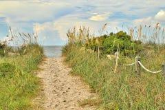 Entrata della duna della spiaggia Fotografie Stock