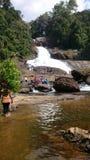 Entrata della foresta di Sinharaja - rubinetto di acqua Fotografia Stock