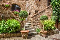 Entrata di pietra alla casa antica in pieno delle piante Immagine Stock Libera da Diritti