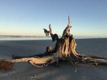 Entrata di ponce della spiaggia Fotografia Stock