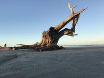 Entrata di ponce della spiaggia Fotografie Stock Libere da Diritti