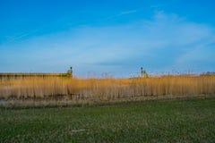 Entrata di porto di precedente isola Schokland fotografia stock libera da diritti