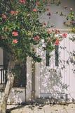 Entrata principale bianca in Grecia Fotografia Stock Libera da Diritti